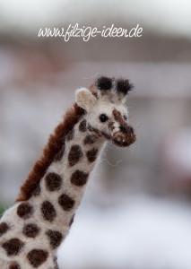 giraffe-kopf